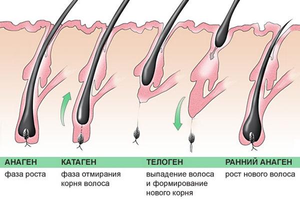 Как сделать так чтобы волосы росли медленнее на ногах