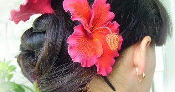 Отзывы о пользе гибискуса для волос