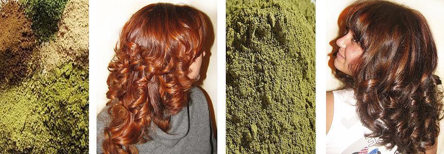Полезные рецепты окрашивания волос хной